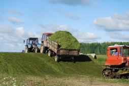 План по заготовке сенажа в Белоруссии практически выполнен