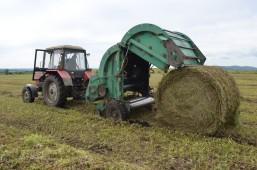 План по заготовке кормов в Белоруссии осталось выполнить чуть более чем на 10%