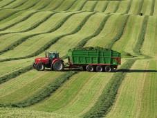 Травяные корма в Белоруссии осталось заготовить менее чем на 10% от необходимого объема